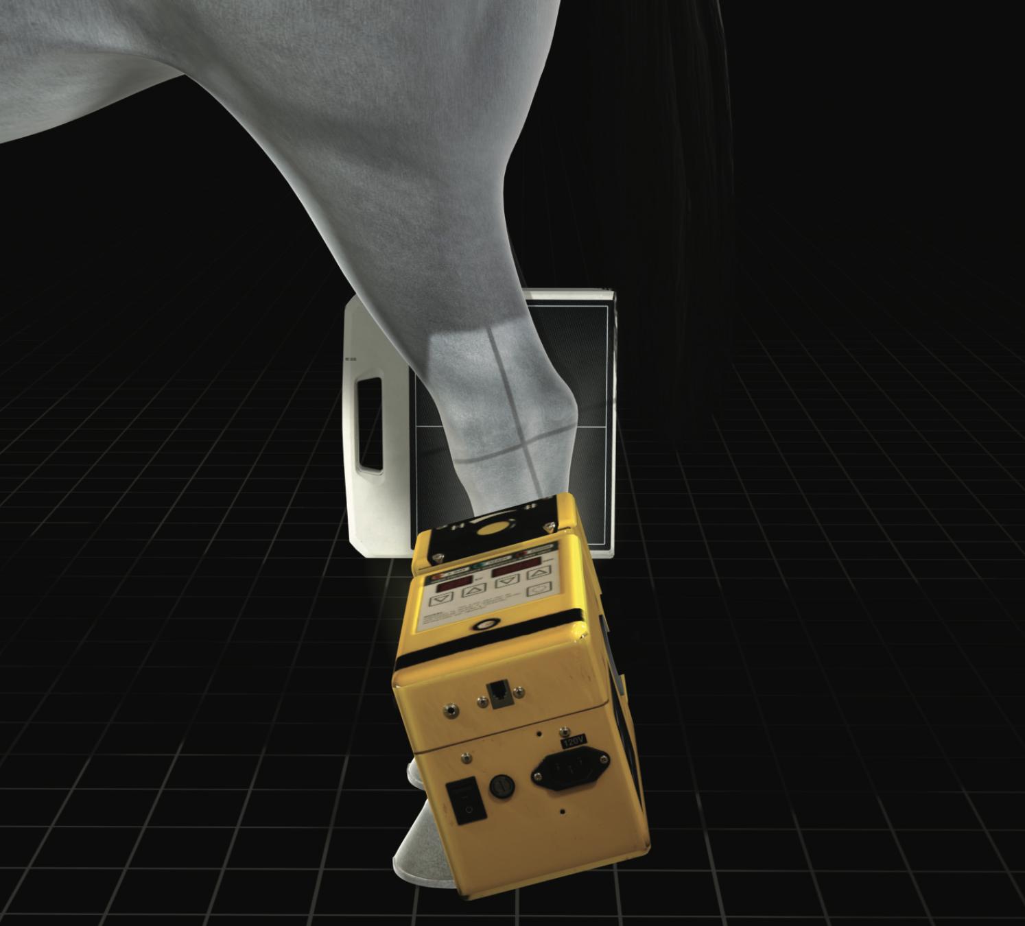 3D-Position-Assistant-Equine