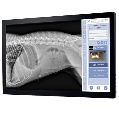 veterinary digital radiography